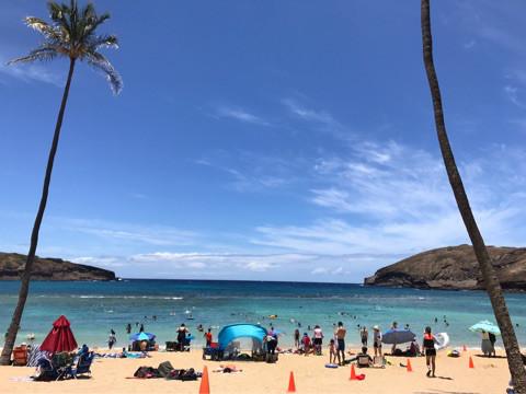 ハワイ学びの旅♪〜ハナウマ湾♪